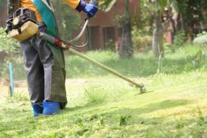 jardinage débroussaillage remise en état